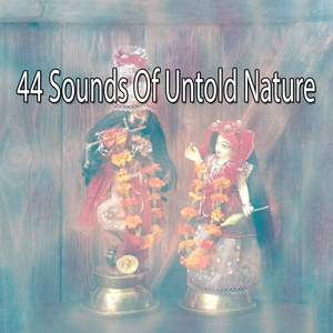 44 Sounds Of Untold Nature