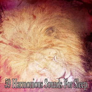 59 Harmonious Sounds For Sleep
