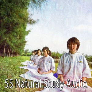 55 Natural Study Audio