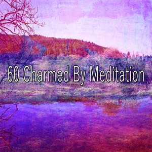 60 Charmed by Meditation
