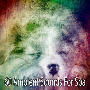 60 Ambient Sounds for Spa