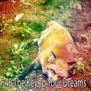 46 The Key to Your Dreams