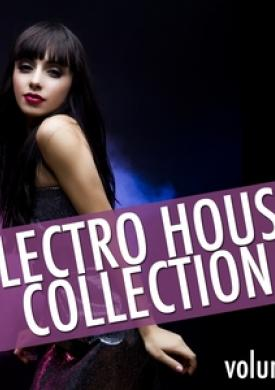 Electro House Collection, Vol. 2