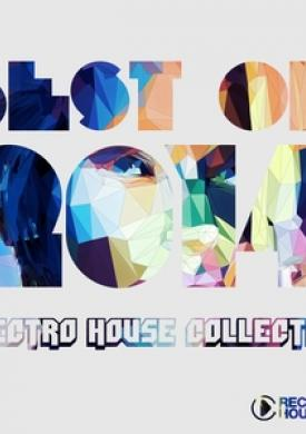 Best of 2014 - Electro House Music Collection