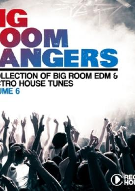 Bigroom Bangers, Vol. 6