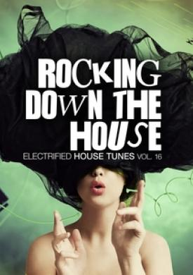 Rocking Down The House - Electrified House Tunes, Vol. 16