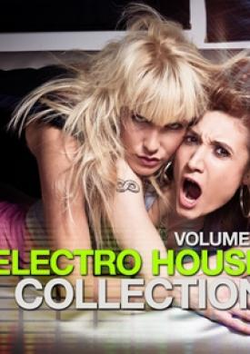 Electro House Collection, Vol. 6