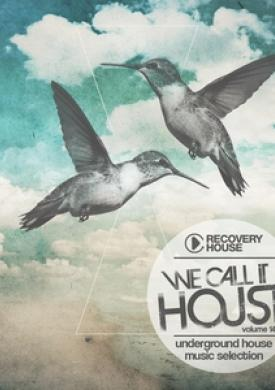 We Call It House, Vol. 14