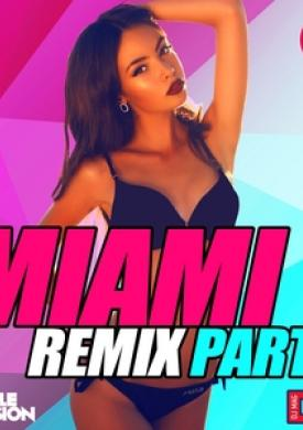 Miami Remix Party