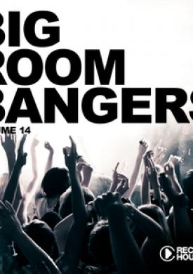 Big Room Bangers, Vol. 14