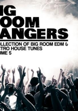 Bigroom Bangers, Vol. 5