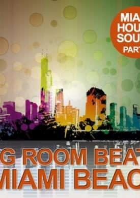 Big Room Beats In Miami Beach, Pt. 1