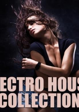 Electro House Collection, Vol. 3