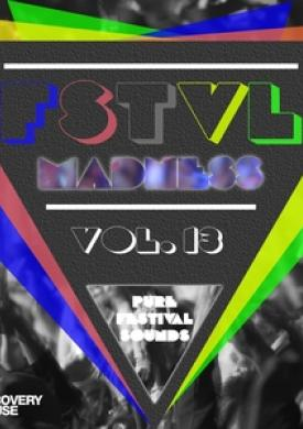 FSTVL Madness, Vol. 13 - Pure Festival Sounds
