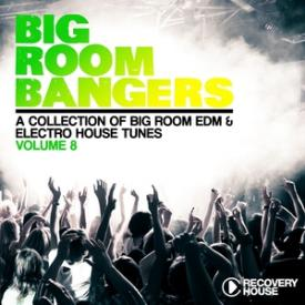 Big Room Bangers, Vol. 8