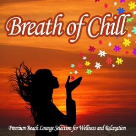 Breath of Chill - Premium Beach Lounge Selection for Wellness and Relaxation