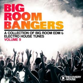 Big Room Bangers, Vol. 9