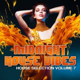 Midnight House Vibes, Vol. 7
