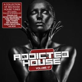 Addicted 2 House, Vol. 17
